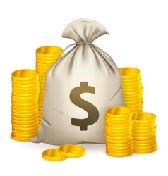Stacks of coins and money bag vector
