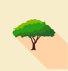 Big savanna tree icon flat style vector