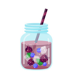 fruit water in a glass jar icon vector image