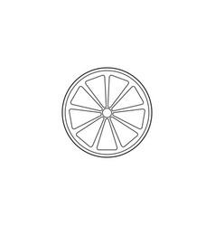 Orange line icon healthy fruit vector