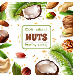 Realistic nuts frame vector