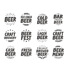 Set labels Craft beer tags and elements vector