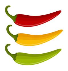 three multicolored chili peppers vector image