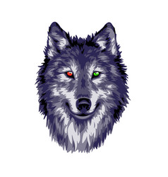 two eyes wolf vector image