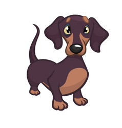 cartoon of dachshund vector image vector image