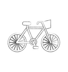 bicycle transport ecology vehicle traditional vector image