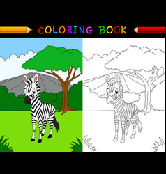 cartoon zebra coloring book vector image