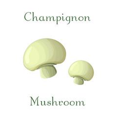 champingnon mushroom hand vector image