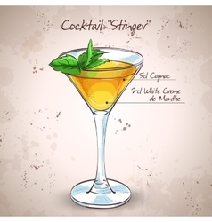 Cocktail alcoholic Stinger vector