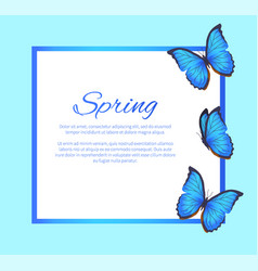 Spring greeting card blue butterflies photo frame vector