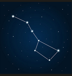 Strar sky with big dipper vector