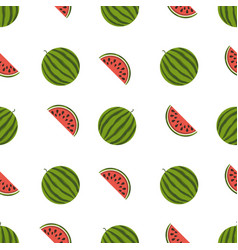 watermelon pattern on white background vector image