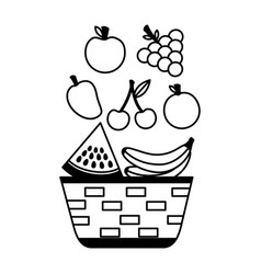 wicker basket with fruits apple grapes banana and vector image