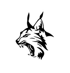 Wild lynx vector