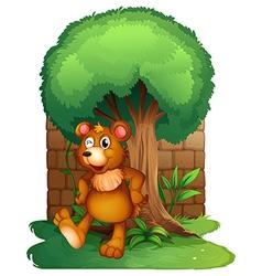 A bear vector image vector image