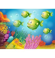 A group of green piranhas under the sea vector image