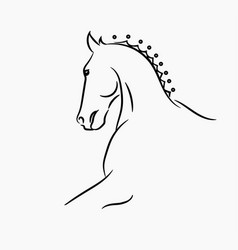 horse head logo vector image
