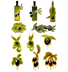 Olives and olive oil icons vector image