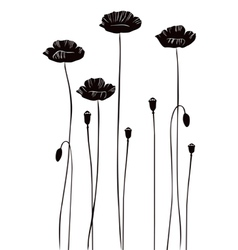 Poppy silhouettes vector