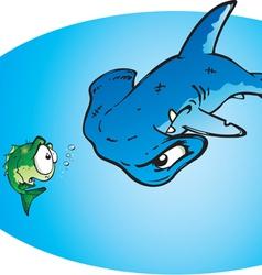 hammer head shark vector image vector image