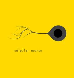 Basic neuron types vector