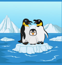 Cartoon happy penguin family standing on ice floe vector