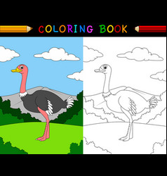 cartoon ostrich coloring book vector image