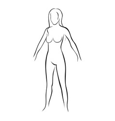 Female stylized body contour icon vector
