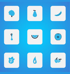 fruit icons colored set with tree lime fruit and vector image
