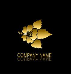 Golden hibiscus symbol vector