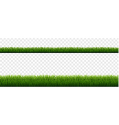 Green grass border with isolated transparent vector