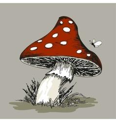 Mushroom amanita with grass vector