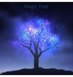 Tree silhouette with starry sky vector