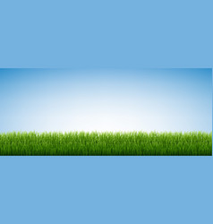 green grass isolated blue sky background vector image