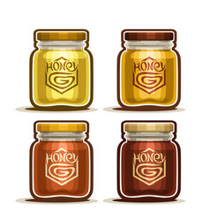 Honey in glass jars vector