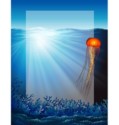 Jelly fish under the ocean vector