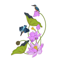 Pink lotuses and kingfishers composition vector