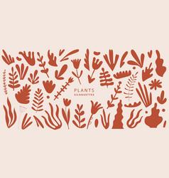 Set exotic palm leaves plants flowers vector