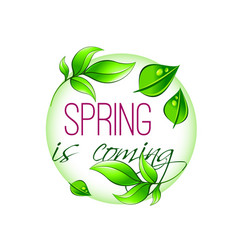spring time icon of green leaf vector image