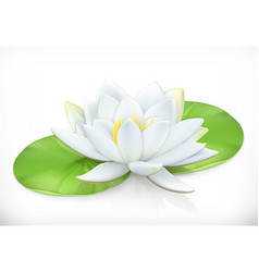 Water lily Lotus flower 3d icon vector image