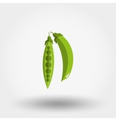 Green peas icon vector image