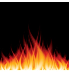 object fire crop vector image