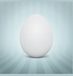 realistic white egg on abstract vector image