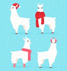 winter style llama alpaca vector image