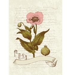 vintage poppy card vector image