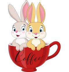 cartoon couple rabbit in coffee cup vector image
