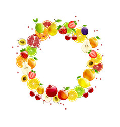 fresh fruit wreath vector image