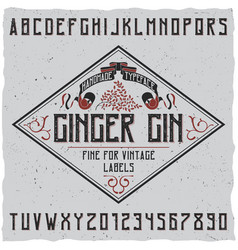 Ginger gin typeface poster vector