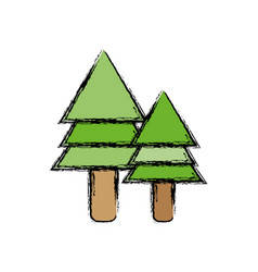 Natural pine trees botany icons vector