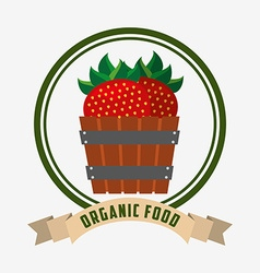 organic and fresh product design vector image
